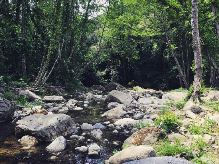 streamscape girona