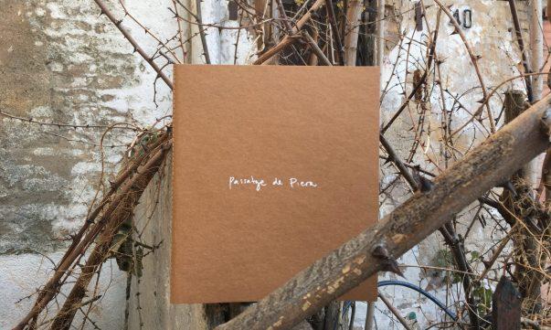 """Passatge de Piera """"Interpretación de una transición"""" an exhibition in an artist book - https://alexiamedici.com/interpretacion-de-una-transicion"""